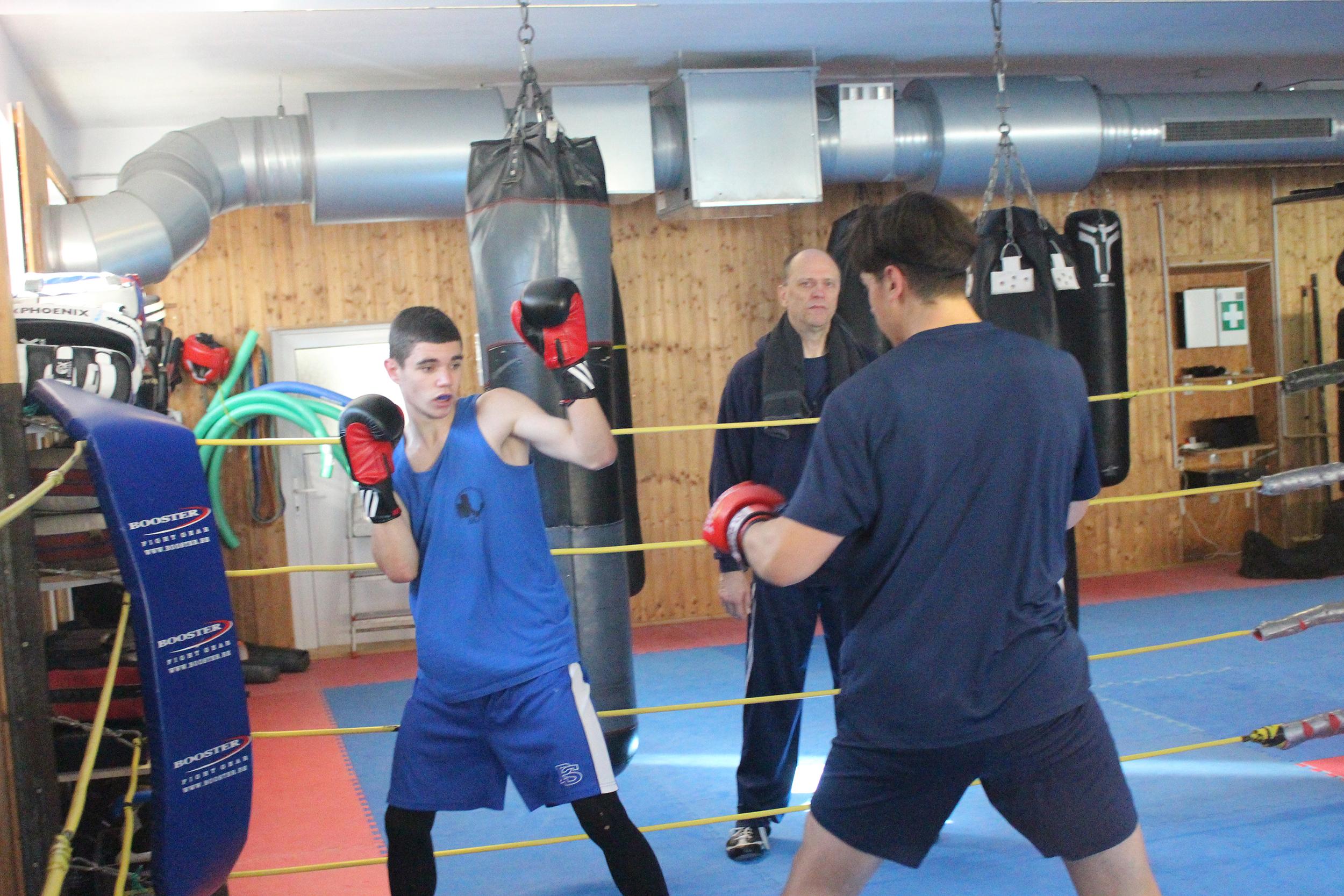 Boxer des BKV erfolgreich